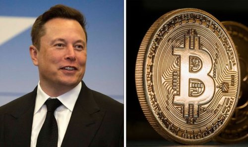 Bitcoin in for 'excruciating downtrend' ‒ expert's 'devastating' warning before Musk tweet