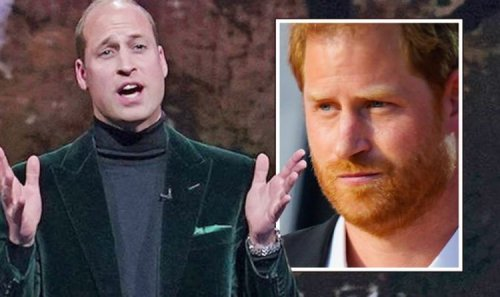 Royal Family: Sussex fans rage as Harry urged to be 'ashamed' of new William project