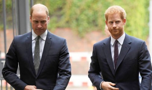 Prince Harry and Prince William made heart-wrenching promise to Diana, says author