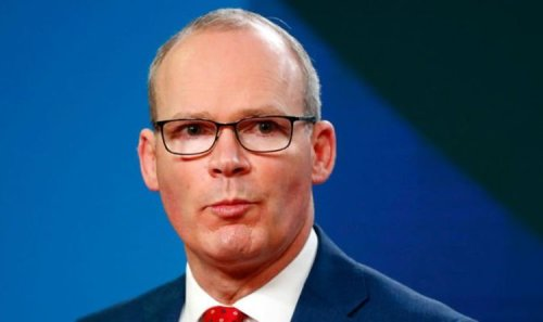 'Nobody asked them!' Brexiteer silences Coveney as he shreds 'unconstitutional' EU deal