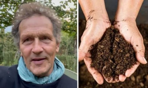 'Stop using it now!' Monty Don issues important warning to all gardeners in the UK