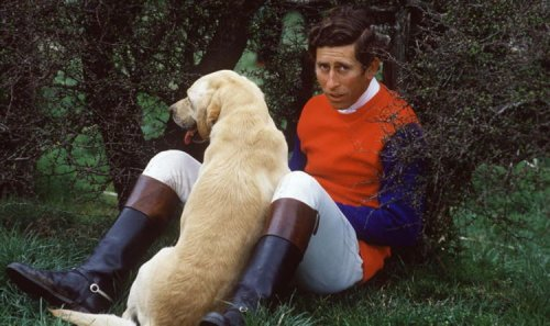 Prince Charles forced to ditch 'faithful old' dog after Diana said it was too 'smelly'