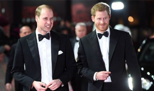 Prince Harry and Prince William to put on 'a carefully choreographed show of unity