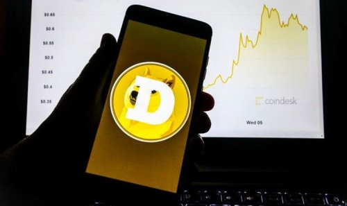 Dogecoin warning: Will Dogecoin reach heights of bitcoin? 'Worst of the crypto industry'