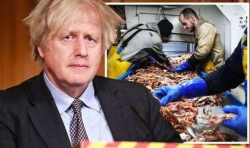 Get a grip! Brussels ordered to budge in shellfish row – UK bypasses EU for direct talks
