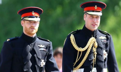Prince William warned Harry 'longer courtship critical' after parents wedding failure
