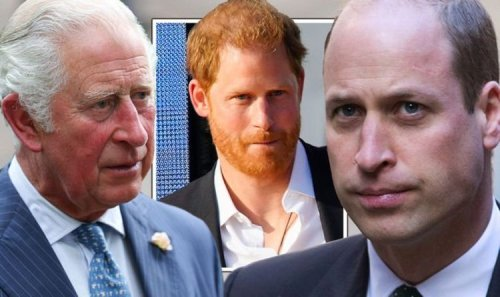 Firm dubbed 'outspoken pressure group' as Harry 'plugging away'