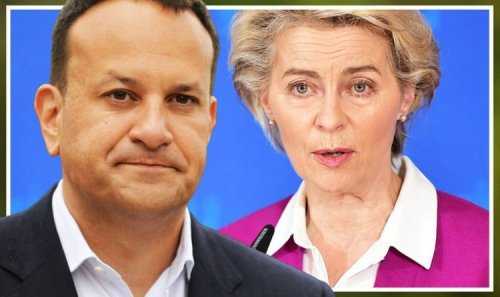Varadkar thrown under bus! Ireland warned NO advantages of being in EU after 'surrender'