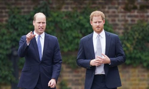 Prince Harry 'shut off his phone angrily' in bitter row with Prince William