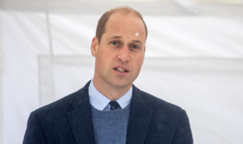 Prince William could 'take ownership of his mother's legacy' at Diana statue unveiling