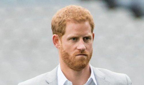 Prince Harry warning: 'Americans won't take notice' of Duke's 'elitist' professional work