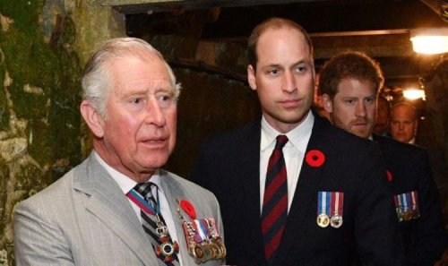 William and Charles urged to stop 'dropping bombs' as future kings will 'alienate people'