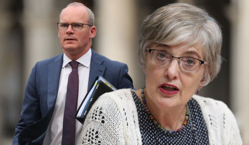 Coveney Mandarins Didn't Want 'Princess Pushy' To Get UN Job