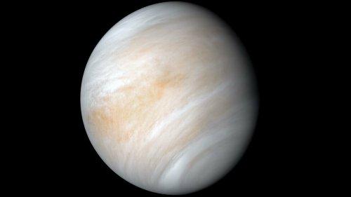 Phosphine Detected in Venus's Atmosphere May Have Just Been Sulfur