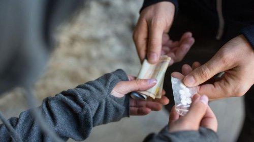 Pour fuir les trafiquants de drogue, des retraités s'installent dans une cabane