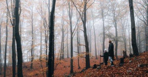 Wie entsteht Nebel? Für Kinder einfach erklärt