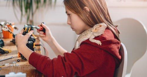 Hochbegabte Kinder fördern: So könnt ihr eure Kinder unterstützen