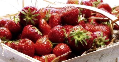Erdbeeren kaufen: 5 Fehler, die wir alle bei der Erdbeerwahl machen | familie.de