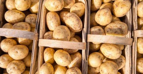 Kartoffeln einkochen: Tipps, um Kartoffeln haltbar zu machen