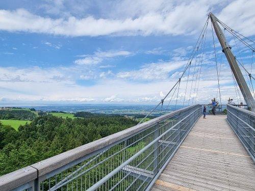 Skywalk Allgäu: Erlebt den Naturerlebnispark in Scheidegg