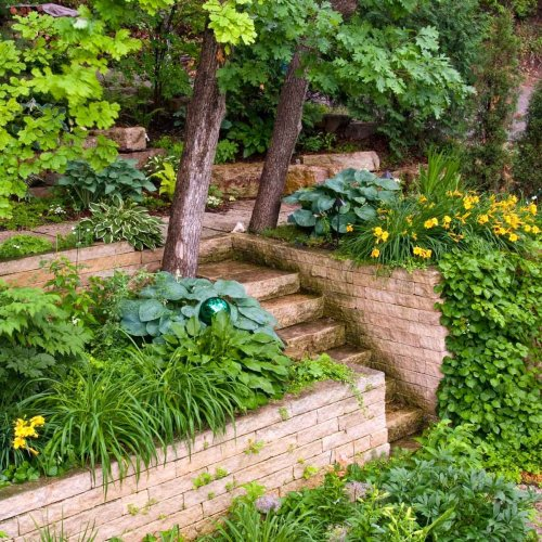 10 Small Plants for Landscaping