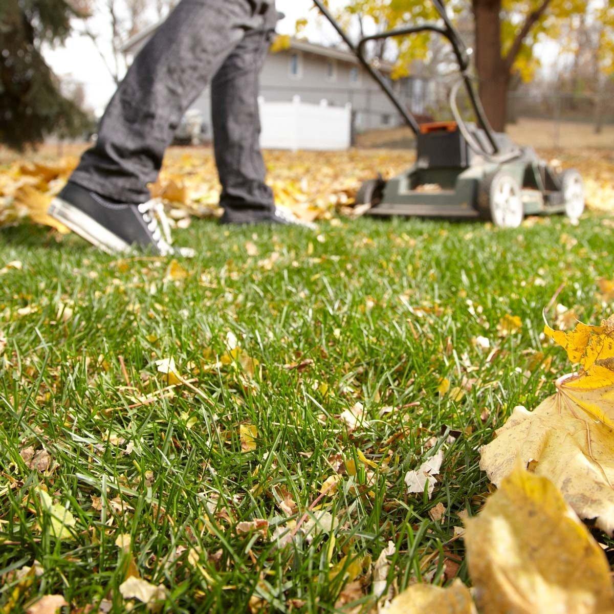 The Best Fall Lawn & Garden Tips
