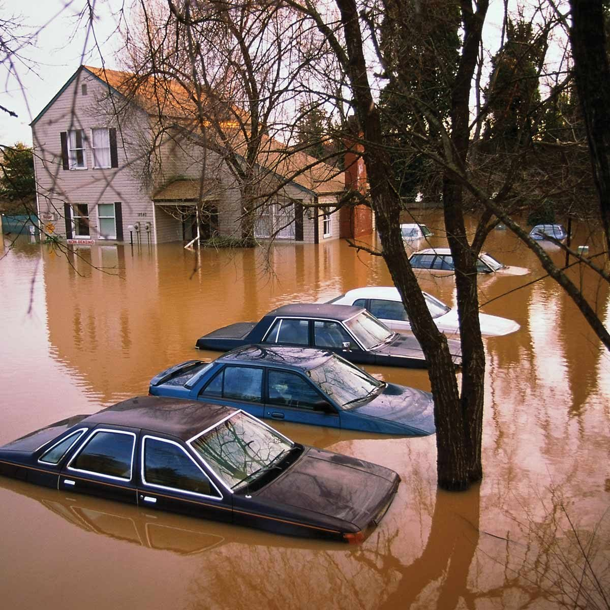 Severe Weather: What To Do During a Flood