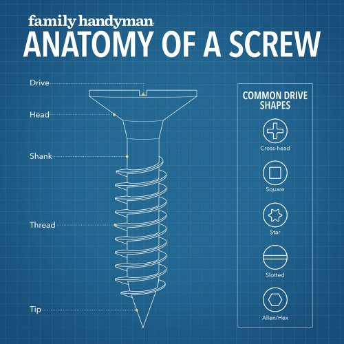 6 Types of Screws Every DIYer Needs To Know