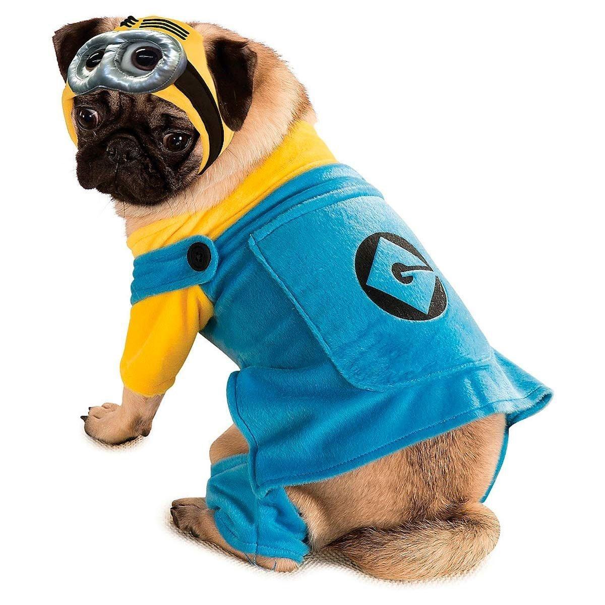 10 Best Dog Halloween Costumes