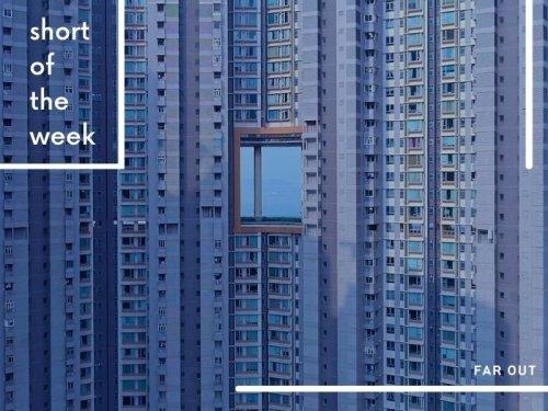 Short of the Week: A meditation on modernity by WangShui