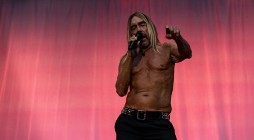 Iggy Pop used to smoke spider webs to get high