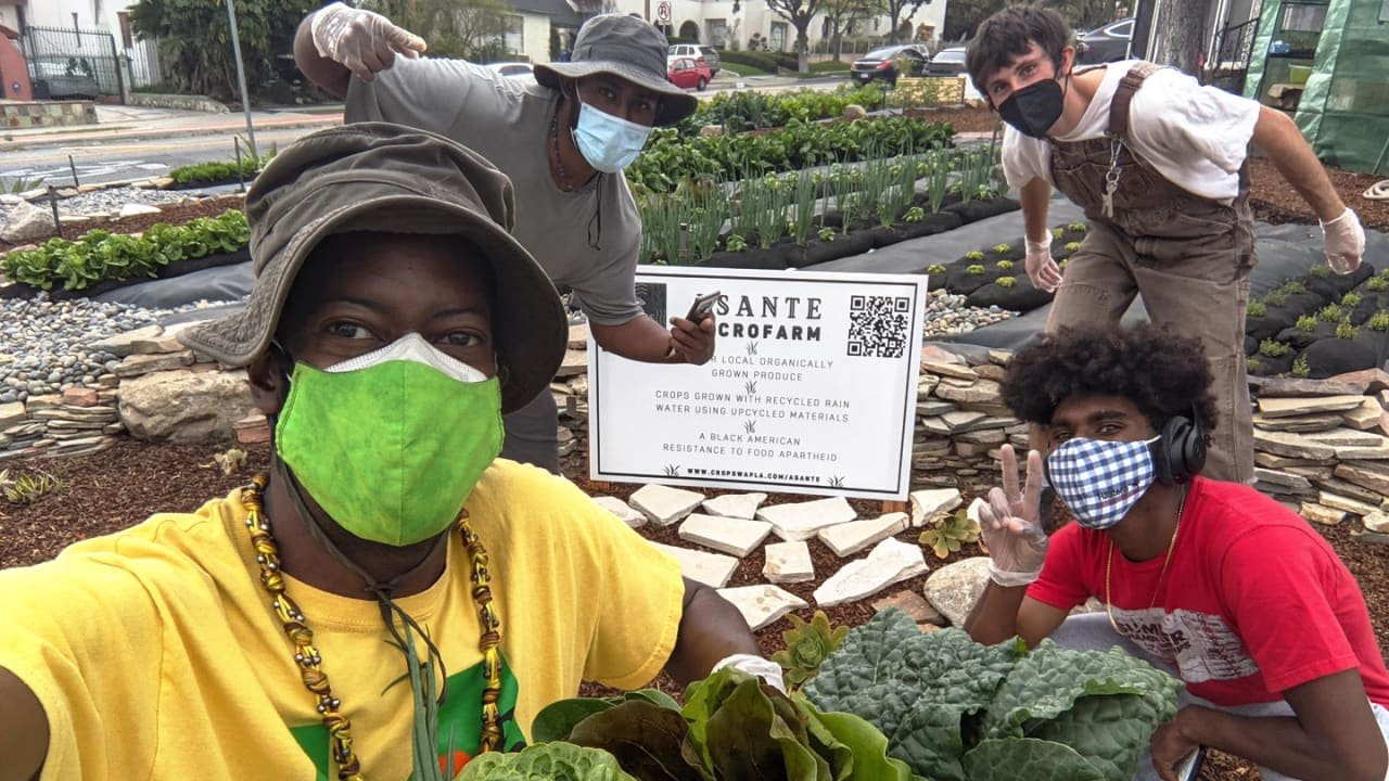 When communities take back control of agriculture - cover