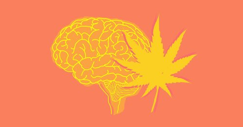 What Does Weed Do to Your Brain and Body?