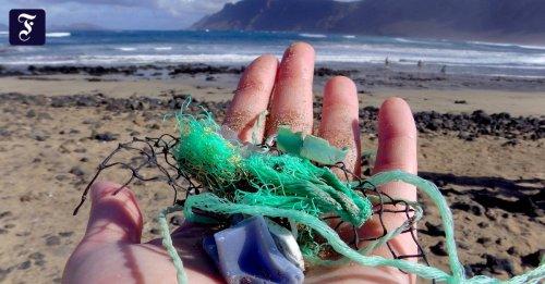 Müllberge im Meer wachsen: Die Explosion der Plastosphäre