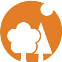 Forest Financial Planning