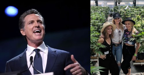 California's $100 Million Marijuana Bailout Tells You All You Need to Know about Its Government