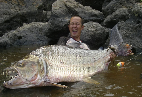 10 of the Nastiest and Hardest Fish to Catch on the Planet