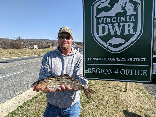 Virginia Trout Fisherman Catches a 3-Pound Minnow, Setting a New Fallfish Record