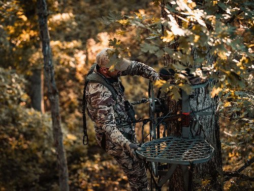 The Complete Guide to Hunting Deer from a Treestand