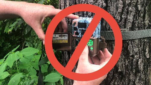 Arizona Decides Trail Cameras Violate Fair Chase; Slap Hunters with Country's First Full Cam Ban