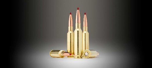 Is the 6.5 Creedmoor The New King of Cartridges?