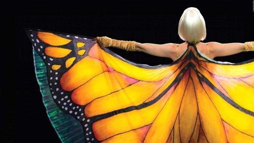 """Trailer zum packenden Liebesdrama """"Die Sinnlichkeit des Schmetterlings"""""""