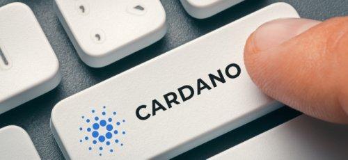 Cardano kaufen - diese Möglichkeiten gibt es