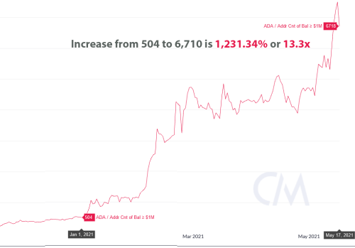 Number of Cardano millionaires spikes 1,231% (or 13x) in 2021