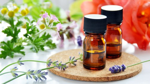 The 5 Best Essential Oils to Naturally Repel Ticks