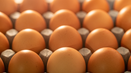 Store Your Eggs Like This to Make Them Last So Much Longer