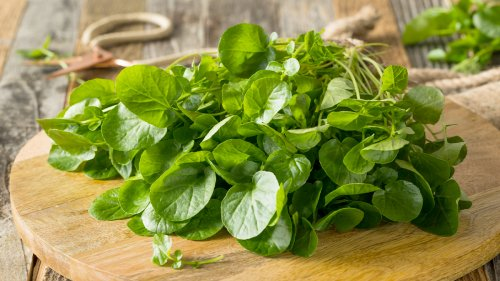 This Delicious Leafy Green Can Help Reduce Wrinkles, Boost Heart Health, and Lower Cancer Risk