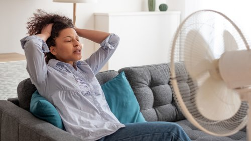The 4 Best Types of Fans to Keep You Cool All Summer Long