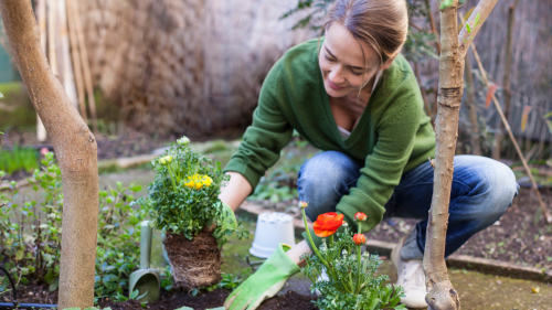 How to Clean Gardening Tools So They Shine Like New