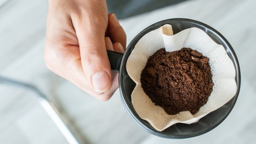 Don't Throw Away Used Coffee Grounds! They Can Help Your Garden Thrive This Spring